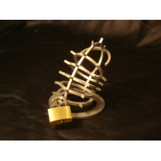 Chastity Cage with Spikes