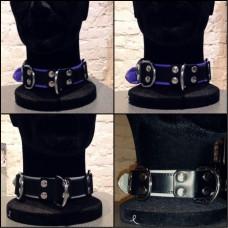 Slave Collar: VIOLET & SILVER