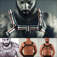 Bull Dog Harness