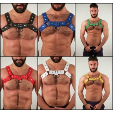 Leonida Harness