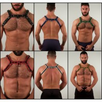 Paride Harness