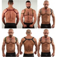Spartacus Harness