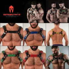 Katerpillar Harness
