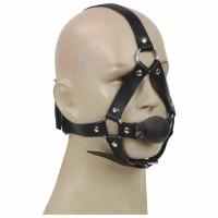 Head Harness with ball gag