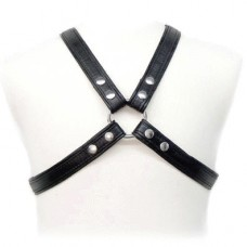 X Form Harness Narrow
